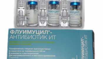 Ринофлуимуцил для ингаляций